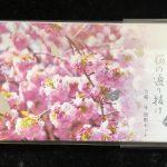 令和2年桜の通り抜け貨幣セット